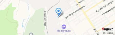 Пион на карте Барнаула