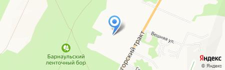 Затан на карте Барнаула