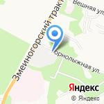 Звездочка на карте Барнаула