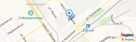 Сова на карте Барнаула