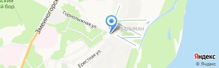 ДЮСШ по горнолыжному спорту на карте Барнаула
