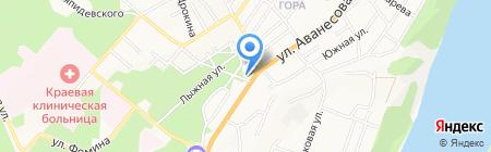 Сибирская Солидарность на карте Барнаула