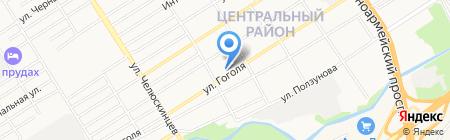 Барс на карте Барнаула