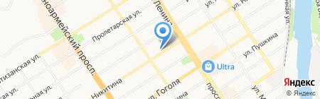 Стрекоза на карте Барнаула
