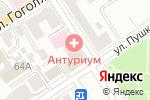 Схема проезда до компании Антуриум в Барнауле