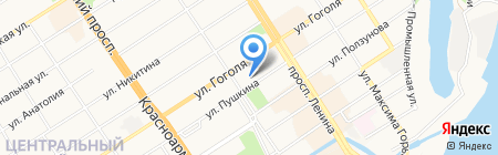 Сюзанна на карте Барнаула