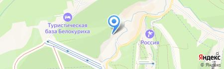 Беркут на карте Белокурихи