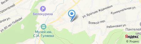 Родник Алтая на карте Белокурихи