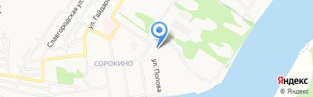 Лесник на карте Бийска