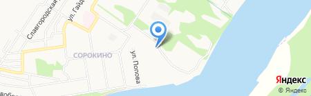 Обь на карте Бийска