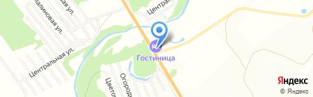 Подорожник на карте Бийска