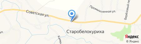Оазис на карте Старобелокурихи