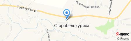 Ольга на карте Старобелокурихи