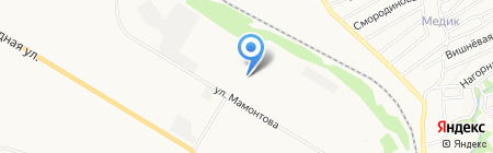 Упаковка на карте Бийска