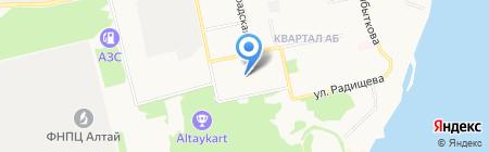 Матрешка на карте Бийска