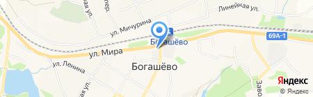 ДИОНИК на карте Богашёво