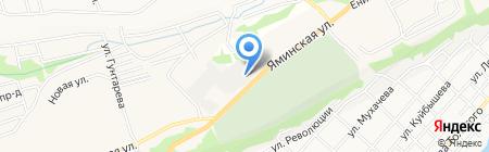 Квит на карте Бийска