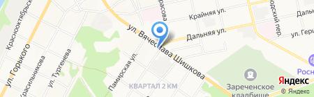 Травы Алтая на карте Бийска