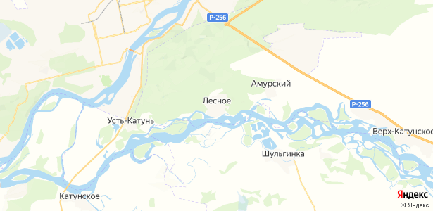 Лесное на карте
