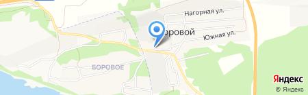 Магазин хозяйственных товаров на карте Борового