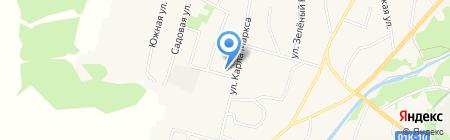 Корзинка мини Дмитриевых на карте Алтайского