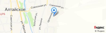 Дом-интернат малой вместимости для престарелых людей и инвалидов на карте Алтайского