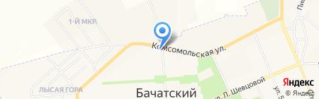 Мечта на карте Бачатского