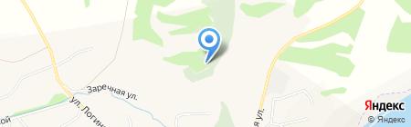 Ильинское на карте Бедарево