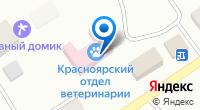 Компания Кот и пес на карте