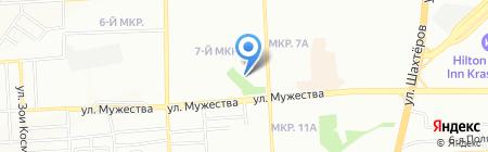 Цветы жизни на карте Красноярска