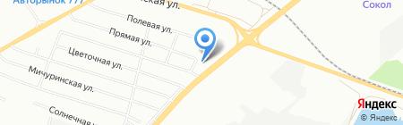 Ёлки на карте Красноярска