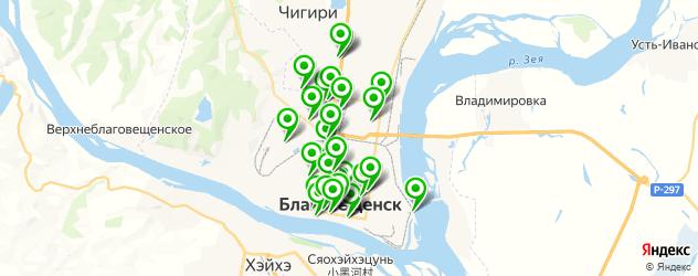 Доставка шашлыка на карте Благовещенска