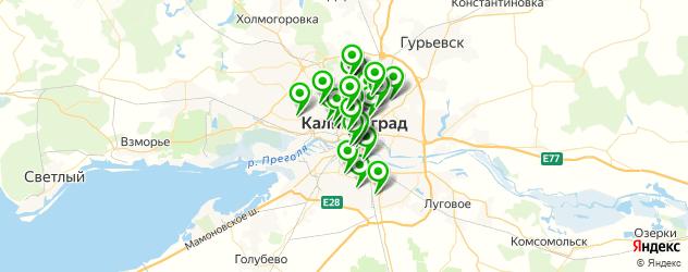 тренажерные залы на карте Калининграда