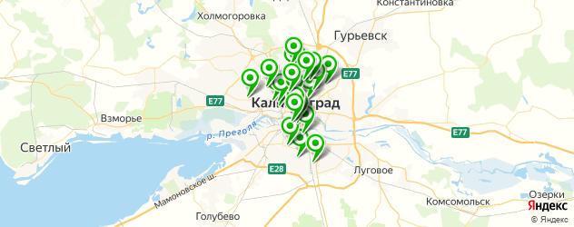 фитнес-клубы на карте Калининграда