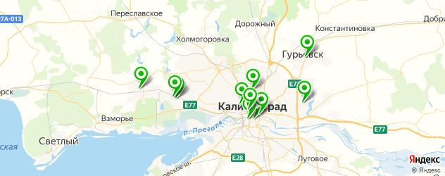 художественные школы на карте Калининграда