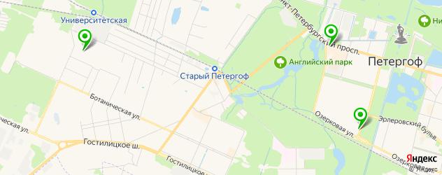 медицинские центры на карте Петергофа