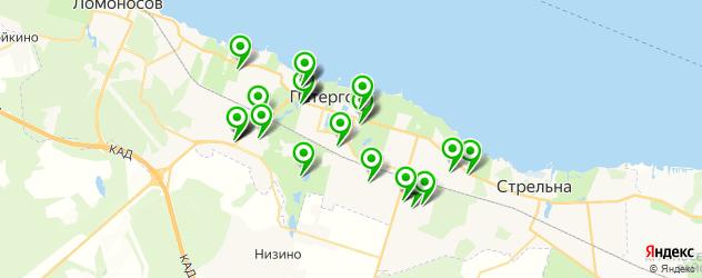 Спорт и фитнес на карте Петергофа