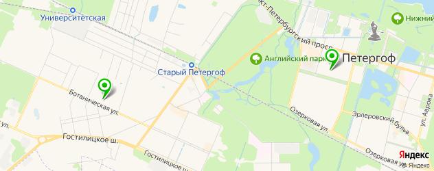 институты на карте Петергофа