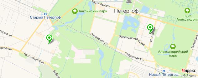 детские поликлиники на карте Петергофа