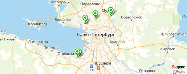 репетиторы по ЕГЭ на карте Санкт-Петербурга