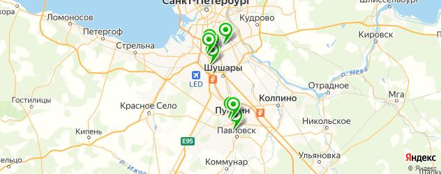 меховые ателье на карте Пушкина