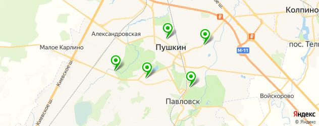 бассейны на карте Пушкина