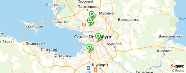 детская иммунология на карте Санкт-Петербурга