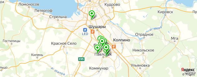 Доставка шашлыка на карте Пушкина