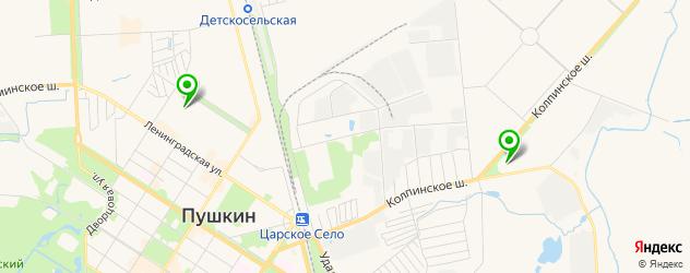 фитнесы с бассейном на карте Пушкина