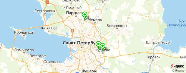 ледовые дворцы на карте Санкт-Петербурга