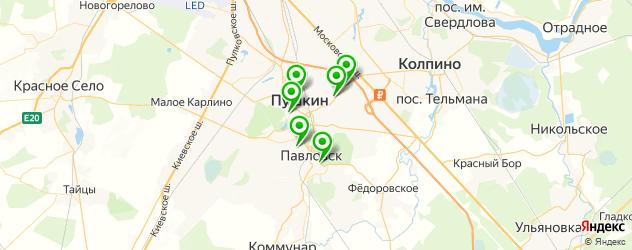 поликлиники на карте Пушкина