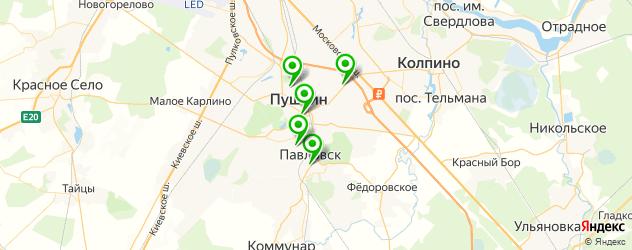 детские поликлиники на карте Пушкина