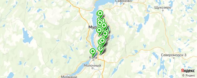 спортивные школы на карте Мурманска