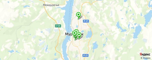 стоматологические поликлиники на карте Мурманска